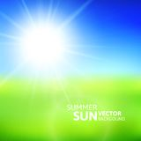 Blurry green field and blue sky with summer sun. Burst, vector background illustration Stock Images