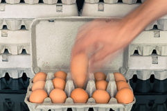 Blurry man hand picking up an egg from egg box Stock Images