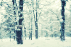 Blurry and rainy view of snowy park Royalty Free Stock Image