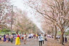 Blurry sakura park with people. Background Royalty Free Stock Photography