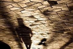 Blurry shadow silhouette of a person and a bird. In motion on city patterned sidewalk in sunset Royalty Free Stock Photography
