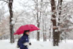 Blurry and snowy man with umbrella. Blurry snowy and rainy man with umbrella walking. View from rainy car glass window Stock Images