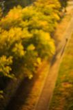 Blurry sunset background, trees and road with shadow figure Royalty Free Stock Photos