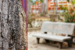 Blurry unfocused bench beside focused tree trunk. Stock Photo