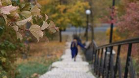 Blurry woman climbing up the stairs in autumn. Blurry young woman stepping up the stairs in autumn over urbanscape background. Foreground yellow foliage swaying stock footage