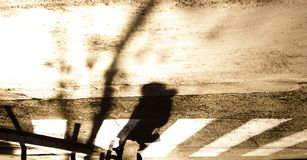 Blurry zebra crossing with silhouette and shadow of a woman walk. Ing in the cold and sunny autumn in sepia black and white , upside down stock images