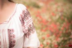 Blusa tradizionale Fotografie Stock