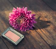 Blush On Cosmetic with chrysanthemum flower. Make up product with pink flower. Blush on cosmetic on wooden table with chrysanthemum flower. Concept of natural royalty free stock photos