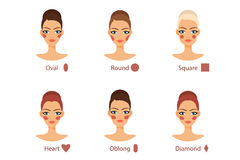 Blush for every woman face shape Stock Images