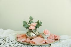 Blush flowers of carnation in a bowl Stock Image
