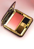 Blush palette Royalty Free Stock Photos