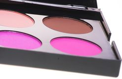 The blush. Professional cosmetics kit. The palette with several blush Stock Image