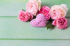 Blush roses on green wooden background. Royalty Free Stock Photos