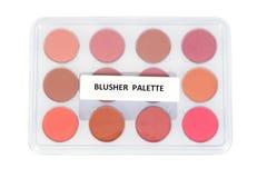 Blusher palette Stock Image