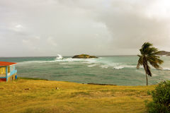 A blustery day in the caribbean Stock Photography