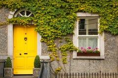 bluszcz otaczał okno Kilkenny Irlandia obrazy stock