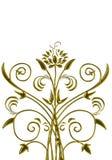 Bluszcza abstrakt zdjęcie royalty free