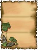 bluszcza pergaminu pino Zdjęcia Royalty Free