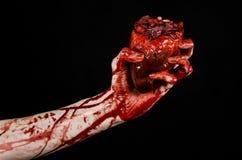 Blut- und Halloween-Thema: schrecklicher blutiger Handgriff heftiges blutendes menschliches Herz lokalisiert auf schwarzem Hinter Lizenzfreies Stockbild