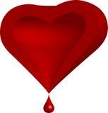 Blutendes Herz Lizenzfreie Stockfotos