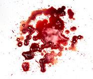 Blutflecke auf Weiß lizenzfreies stockbild
