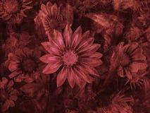 Blutige Blumen stockfotos