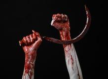 Blutige Hand, die eine Sichel, Sichel blutig, blutige Sense, blutiges Thema, Halloween-Thema, schwarzer Hintergrund, lokalisiert  lizenzfreies stockbild