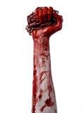 Blutige Hand, die Kette, blutige Kette, Halloween-Thema, weißer Hintergrund, lokalisiert hält Stockfotografie
