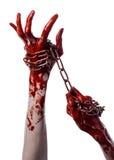 Blutige Hand, die Kette, blutige Kette, Halloween-Thema, weißer Hintergrund, lokalisiert hält Stockfoto