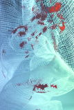 Blutiges Gewebe - Verband Lizenzfreies Stockbild