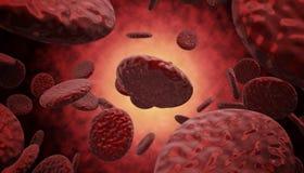 Blutzellen, die hinunter eine Ader kreuzen Lizenzfreie Stockbilder