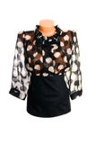 bluzka biel z klasą elegancki Obraz Royalty Free