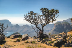 Blyde River Canyon, Mpumalanga region, South Africa. Blyde river canyon viewpoint. Mpumalanga region near Graskop. South Africa stock images