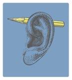 Blyertspenna på örat i inristad stil Arkivfoto