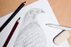 Blyertspenna, radergummi och stämpel med grafitteckningshöken Arkivbilder