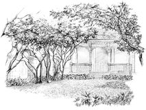 blyertspennaperspektivteckning av trädgården Arkivfoton