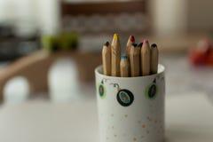 Blyertspennor i kopp Royaltyfri Bild