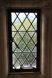 blyinfattat fönster Arkivbilder