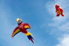 Blyth,诺森伯兰角,英国:2015年5月04日 风筝在飞行中在Blyth 免版税库存图片