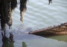 Blyth-Dock Lizenzfreies Stockfoto