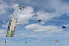 Blyth, Northumberland, Reino Unido: 4 DE MAIO DE 2015 Papagaios em voo em Blyth imagens de stock