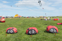 Blyth, Northumberland, UK: 04 MAY 2015. Kites in flight at Blyth Royalty Free Stock Images