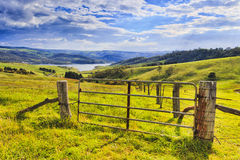 BM Lyell Grazing Gate Royalty Free Stock Images