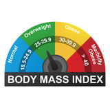 BMI or Body Mass Index Infographic Chart. Normal, overweight, obese, or morbidly obese royalty free illustration