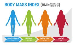 BMI Body Mass Index Infographic Chart Vector Illustration with Woman Silhouette from Underweight to Obese. Poster Background vector illustration
