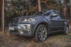 BMW X5 στα ξύλα στοκ εικόνες