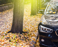 BMW executive car parked in autumn city Royalty Free Stock Photo