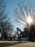 BMX显示在Harajuku日本 免版税库存图片
