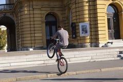 BMX acroabat Stock Image