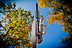 Bmx biker. Jump bmx biker in autumn, view from below royalty free stock images